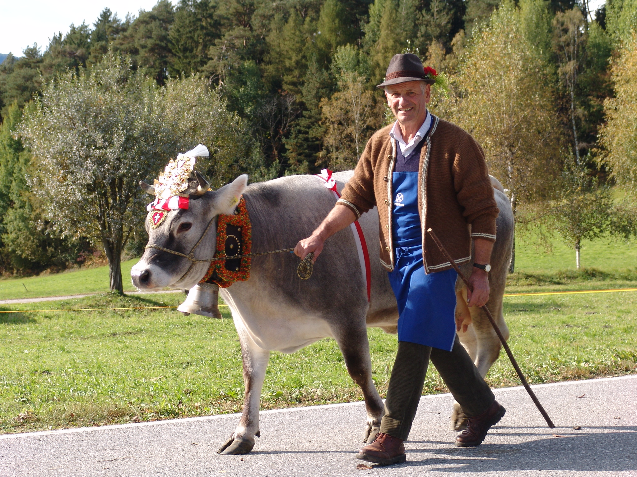 Celebrate the return of the cattle from the mountain in South Tyrol