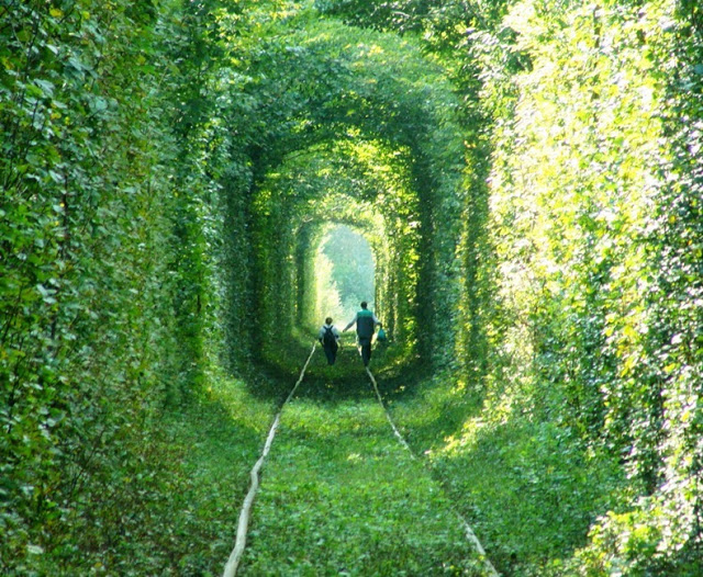 tunnel-of-love-4[3]