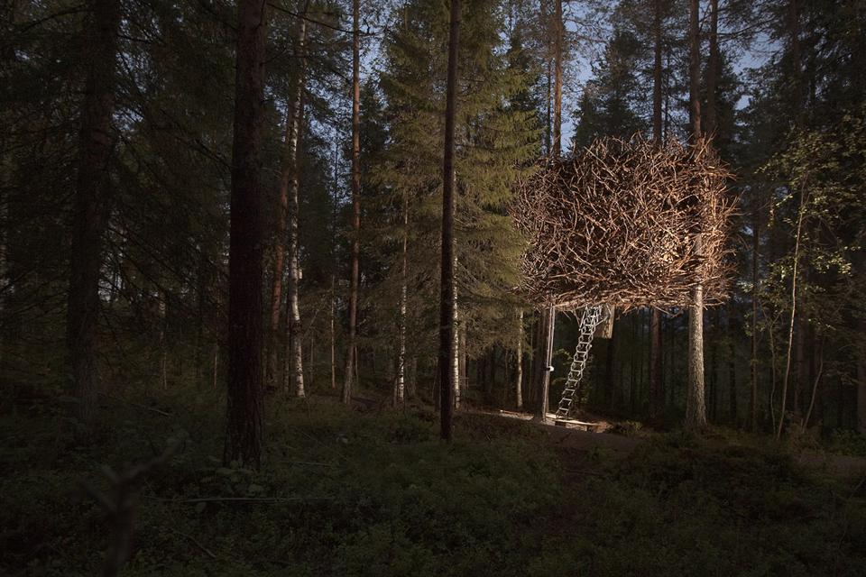 Tree Hotel, Harads, the bird's nest