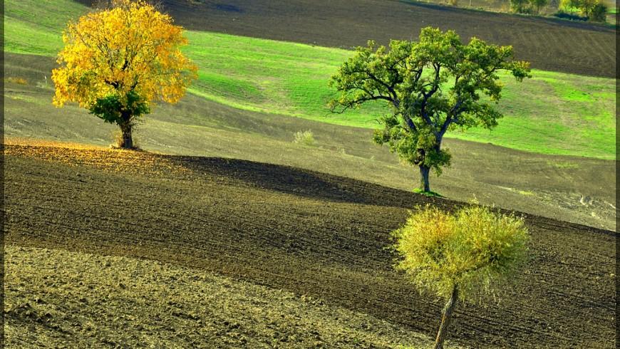 San Severino Countryside, Italy, ph. by gigi 62, via flickr