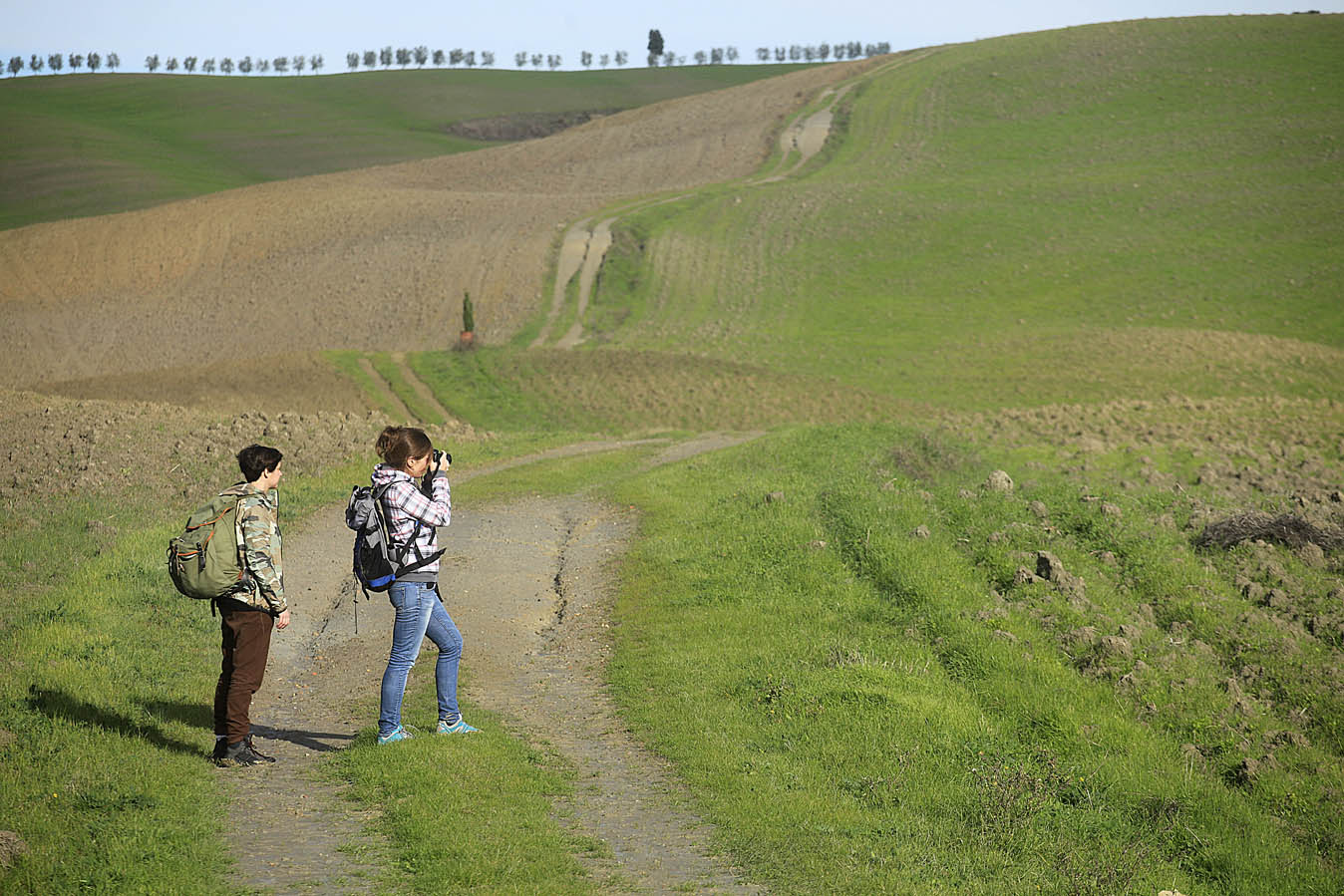 Tuscany, via Francigena, view, photo by Enrico Caracciolo, all rights reserved