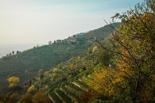Parco Regionale di Montevecchia, Lombardy, ph. by Giorgio Badaini, via Flickr