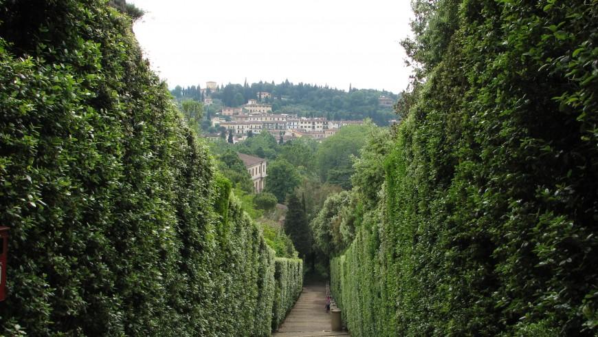 Boboli maze, Florence, ph. by Craig Thomas78, via flickr