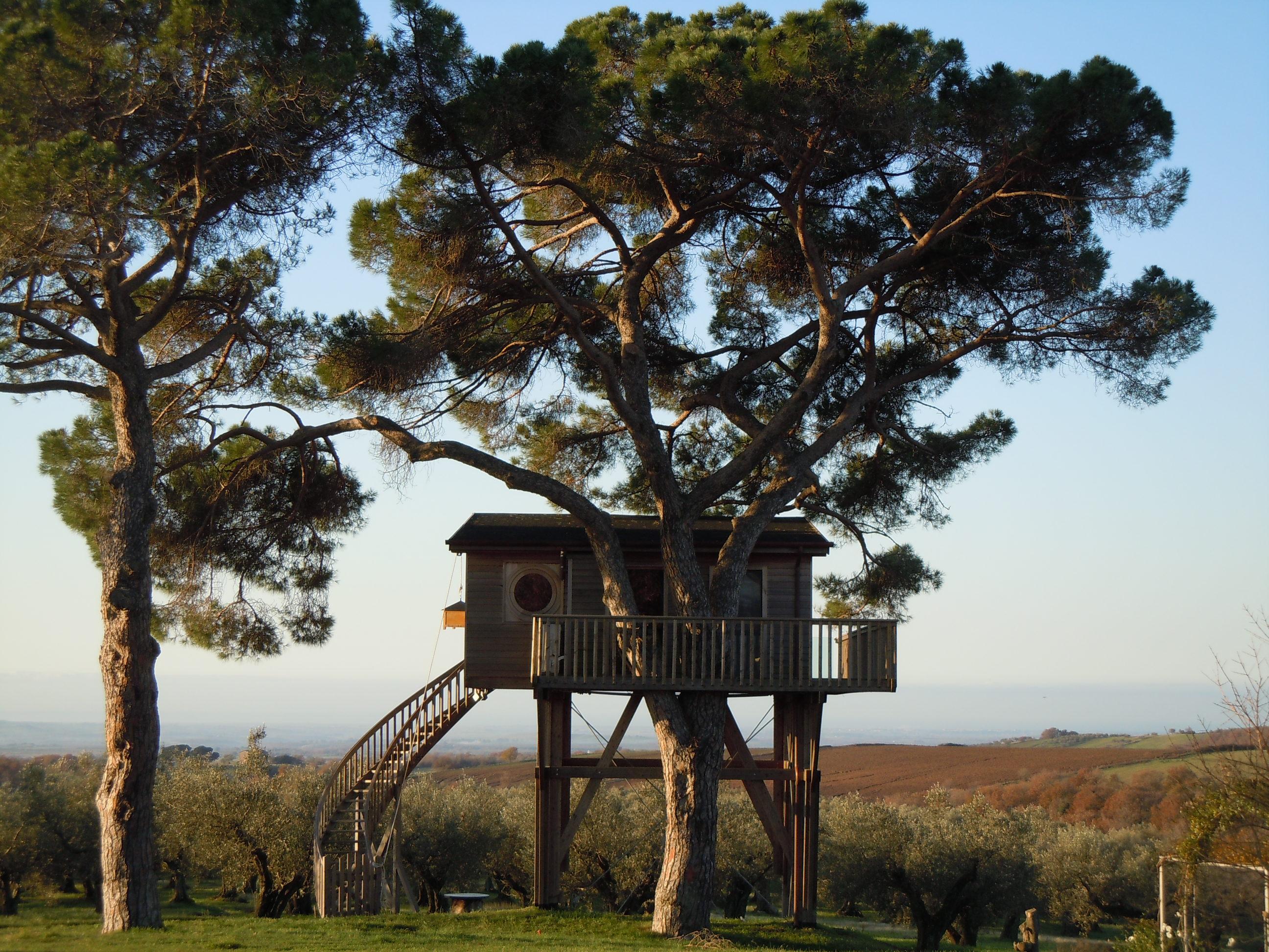 Tree house, La Piantata organic farm, Viterbo, Italy