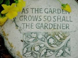 Garden quotation