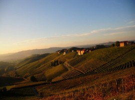 Sunset over Barbaresco village and vineyards