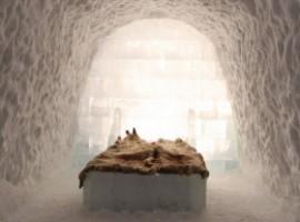 Interior igloo