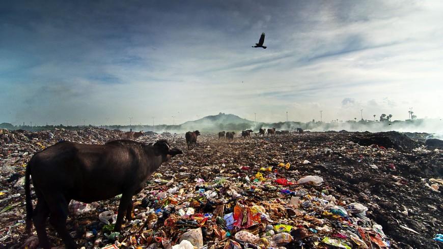 Pollution environment