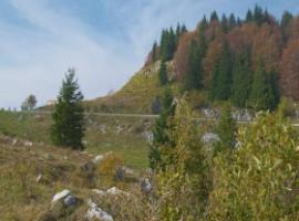 Montegrappa view