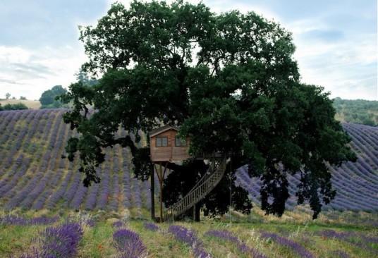 Treehouse in the Organic Farm La Piantata, Viterbo, Italy