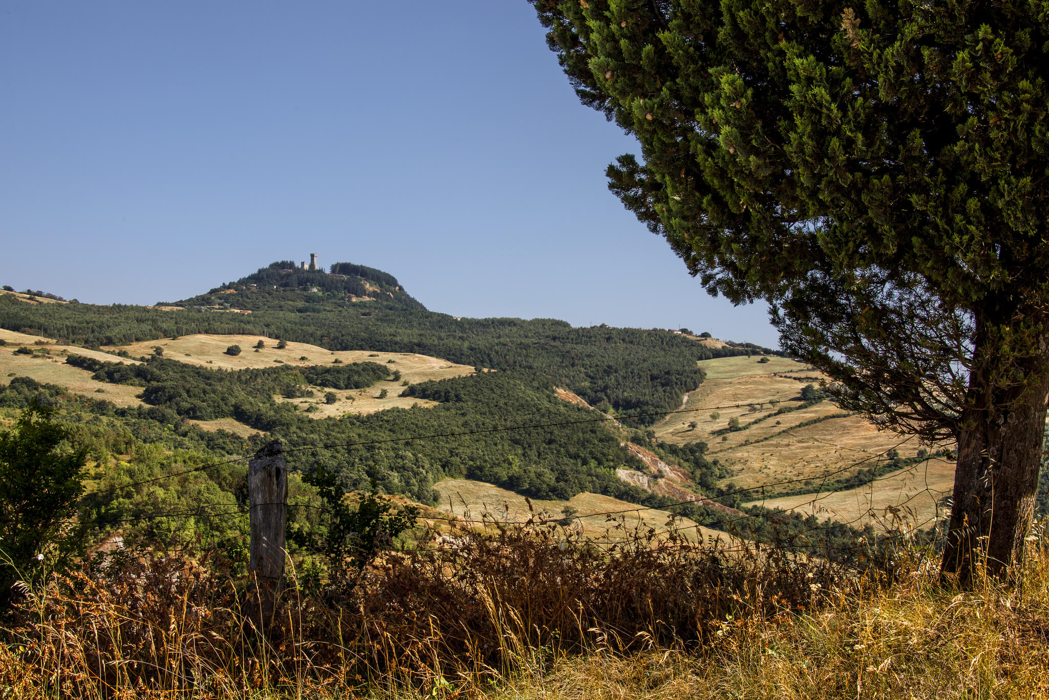 A hill landscape of Tuscany, where woods and fields alternate. At the bottom, on the left there is the hill where Radicofani rises