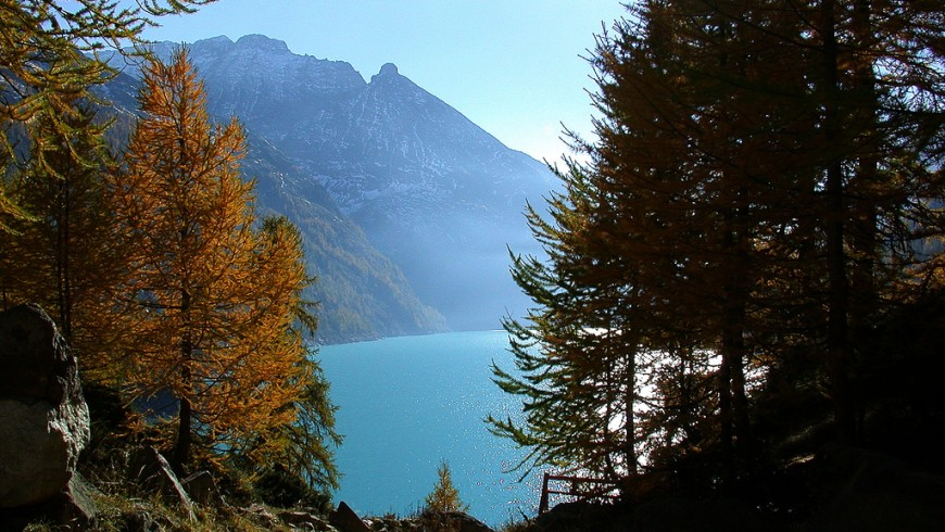 the valpelline during autumn: a lake surrounded by trees