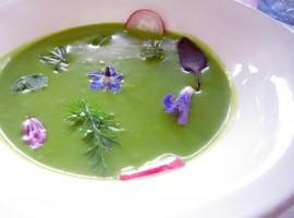 Vegan food at Agritourism Coroncina, Belforte del Chienti, Macerata, Italy