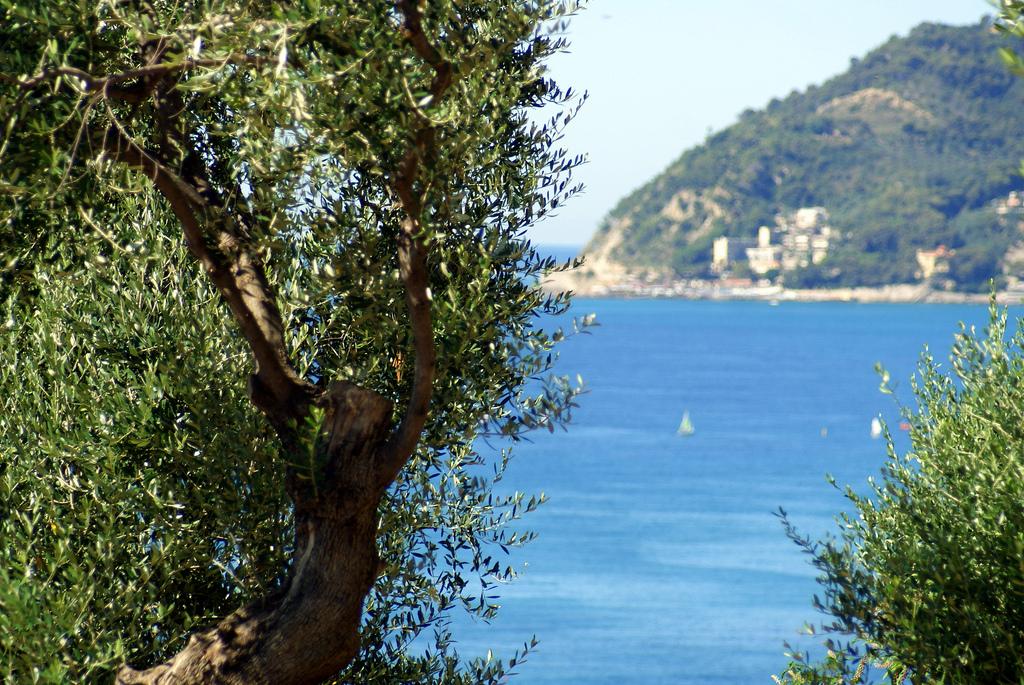 Diano Marina, Liguria, italy