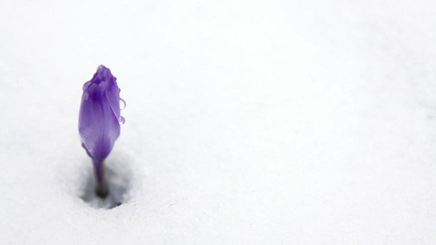 Snow in Trentino Alto Adige, Italy
