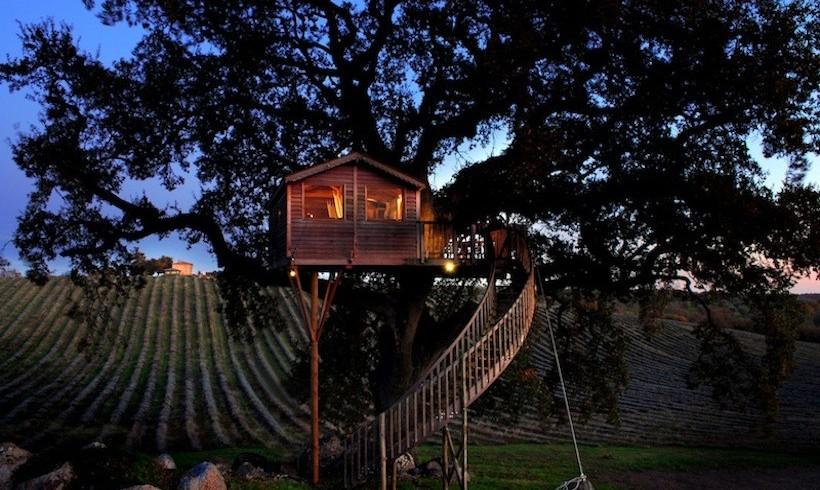 Treehouse in Italy, La piantata, Viterbo