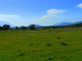Ecofriendly farm camp Agripaules, near Nuoro, Sardinia