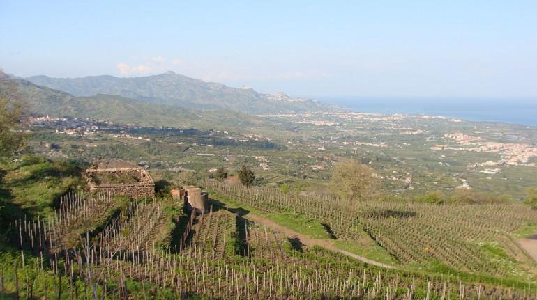 Eco Casa sull'Etna, farm camp in Sicily, on the Etna volcano