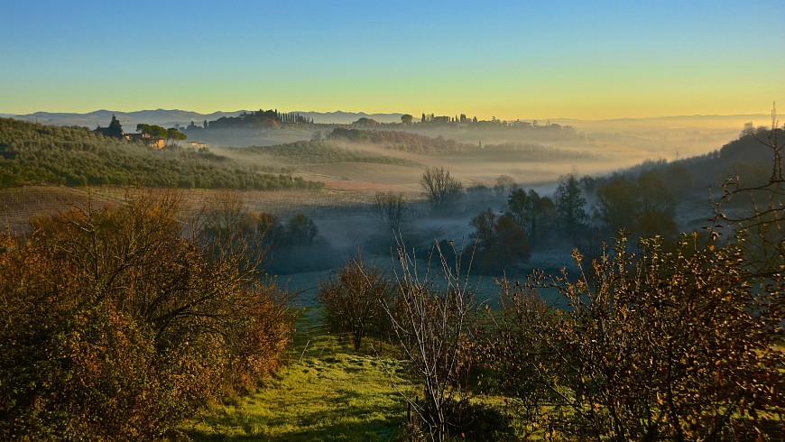 The nature in autumn near Siena