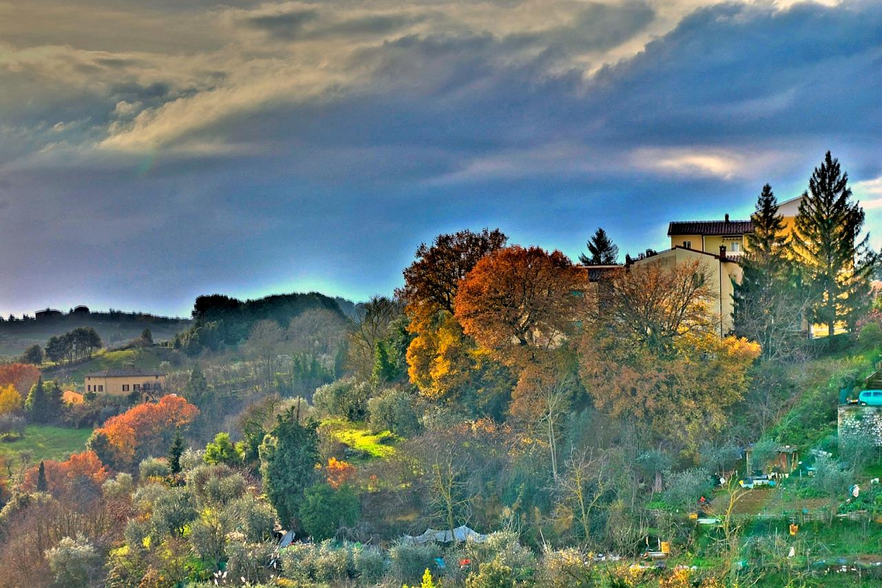 Foliage in the surroundings of Siena