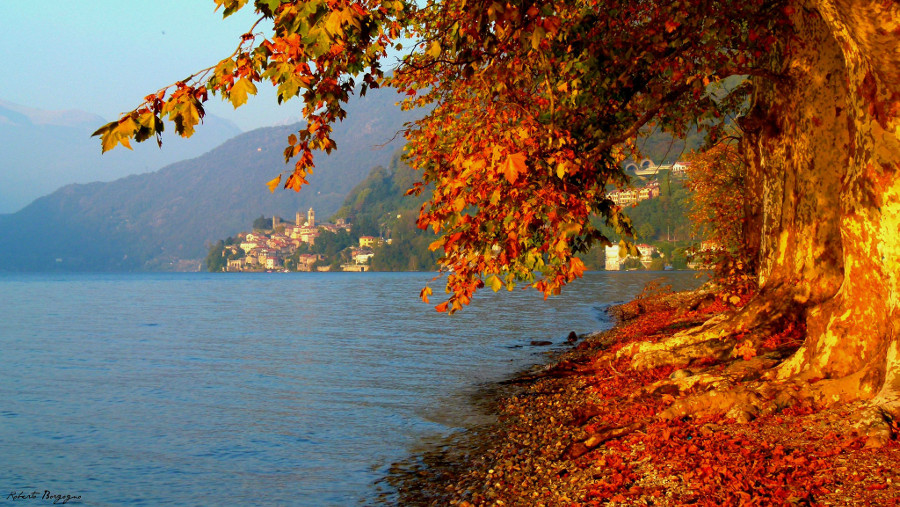 Foliage and Autumn on Como Lake, Italy