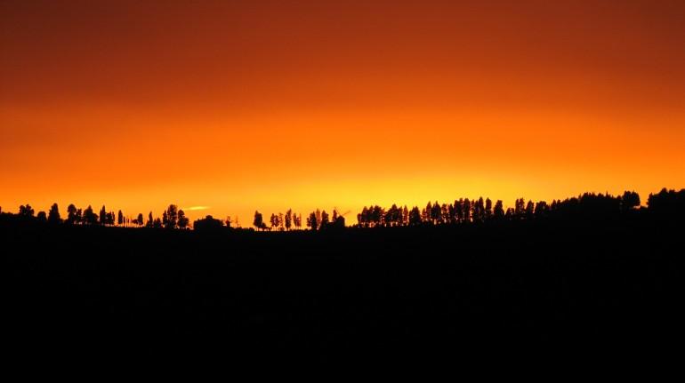 Landscape from La Fontaccia Farmhouse