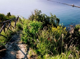 Conero Natural Park
