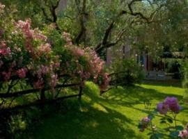 CasaCocò's garden