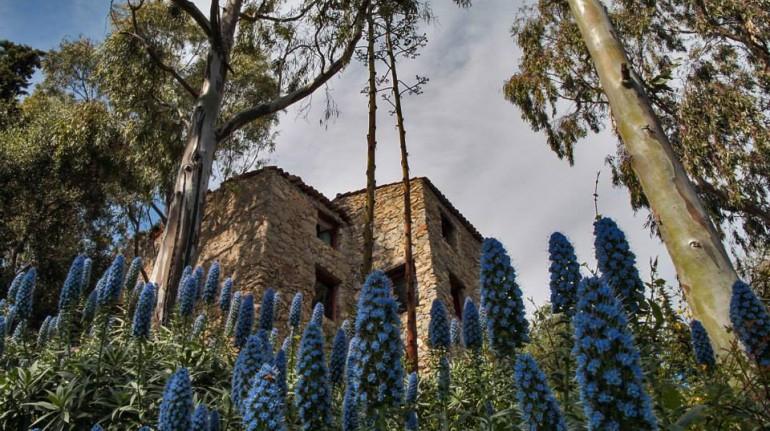 The tower of La Mortola