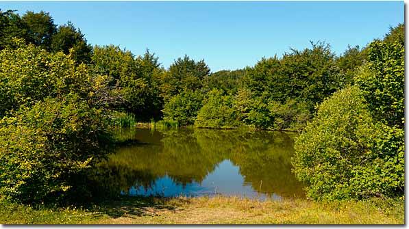 Buono Lake