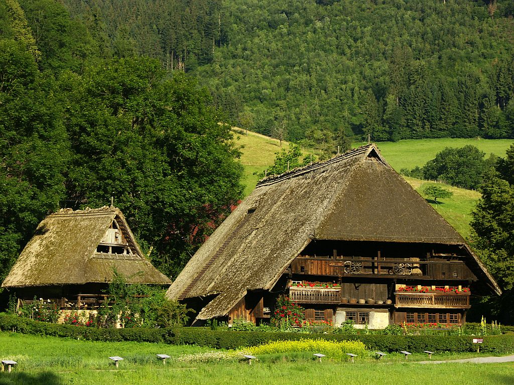 Typical Black Forest's houses
