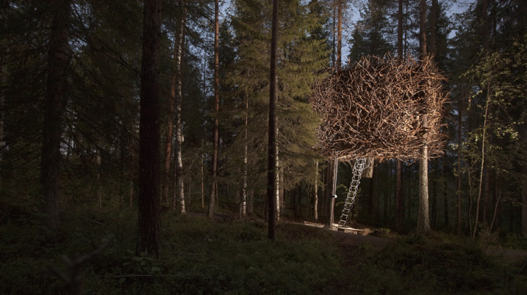 Strangest hotel in the world: Treehotel