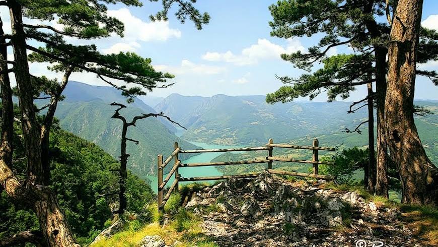 National Park of Tara MTB Tour
