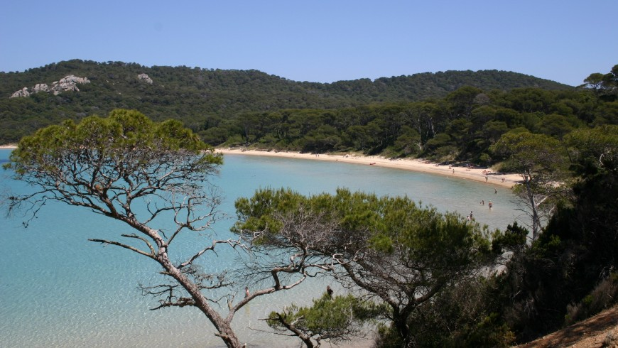 To the discovery of Porquerolles by bike