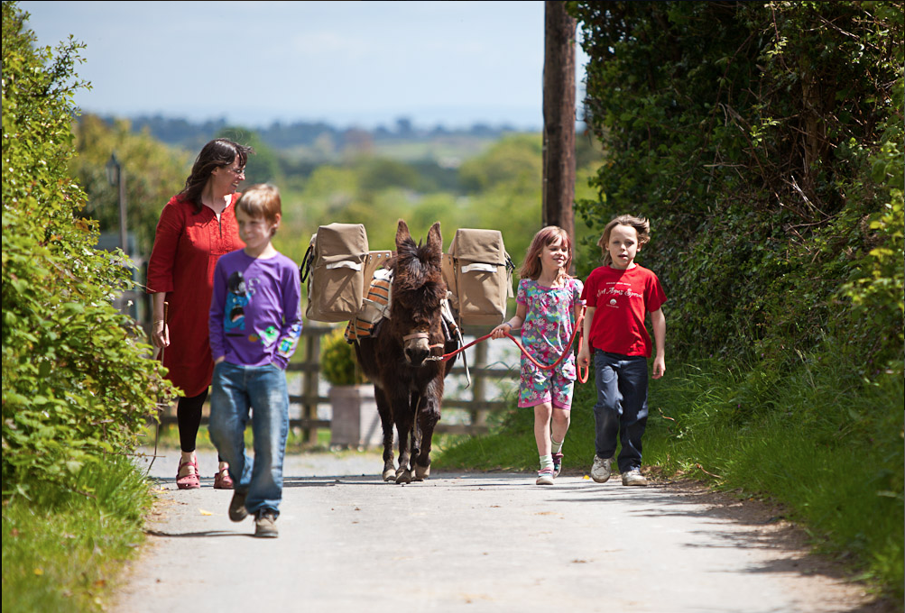 Walking with a donkey in Ireland