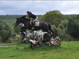 Horseback holiday in The Three Towers Eco House & Organic Kitchen, the perfect place where to stay in Ireland