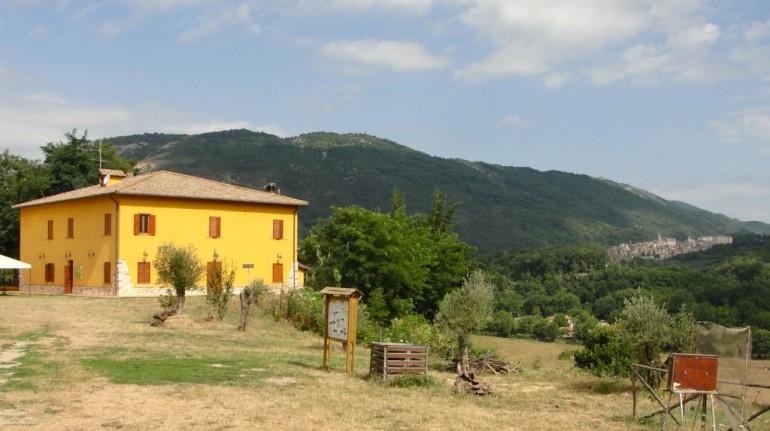 Organic Farm La Sonnina in Lazio