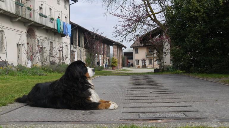 Cascina Santa Brera, perfect for farm holidays in Lombardy