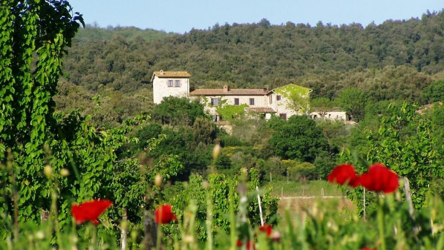 Farmhouse Torre Doganiera, the perfect place to sleep during your journey among Sienese hills