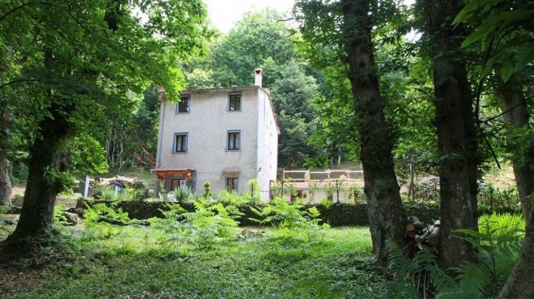 La casina nel bosco, and eco-firneldy accommodation in Tuscany perfect for walking in the woods