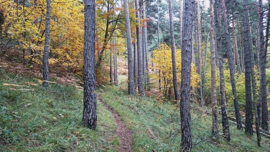 Occitani Trails