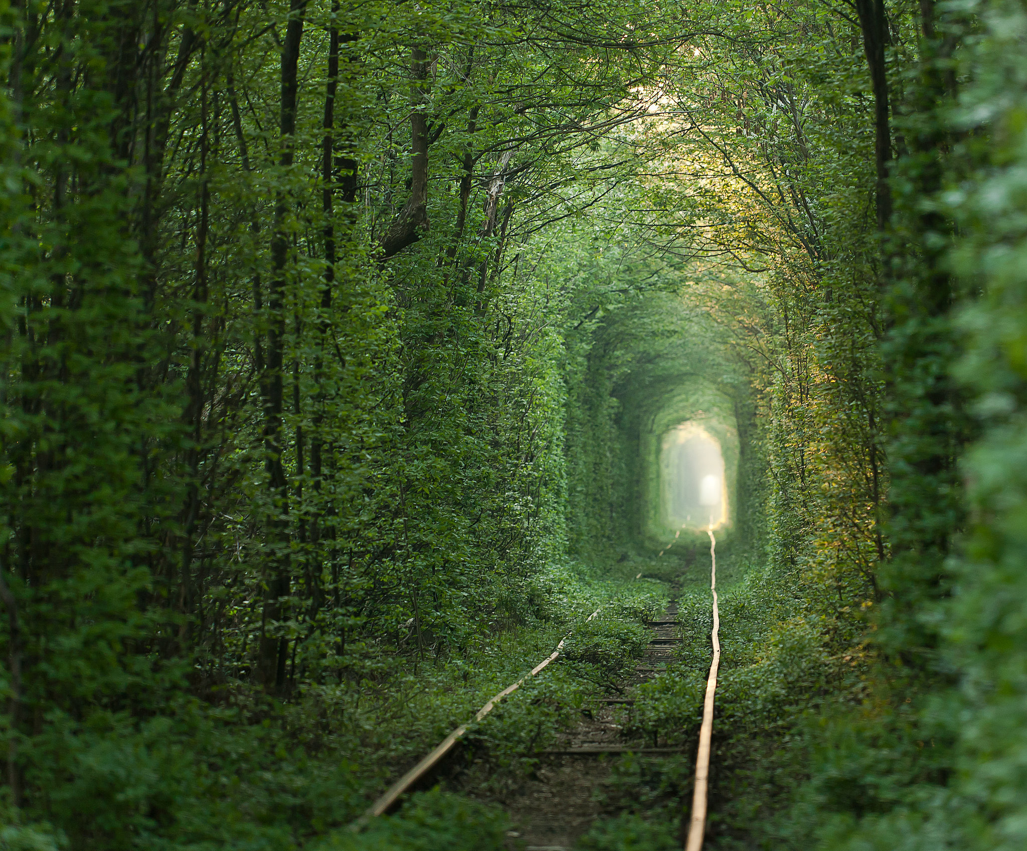 Tunnel of Love, one of the most romantic travels by train of the world