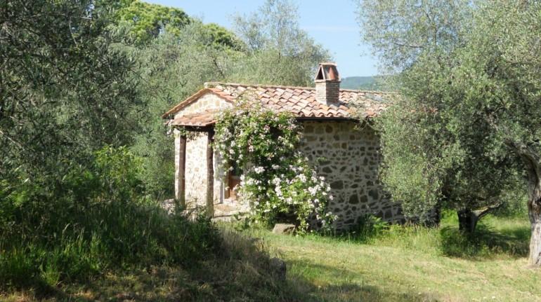B&B in Tuscany