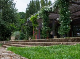 Five your mom an holiday in a wonderful accommodation near Rome for mother's day
