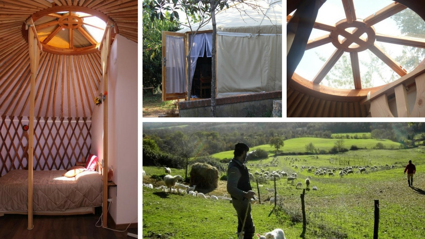 Unusual accommodations: a yurt in Maremma, Pietra Serena agritourism
