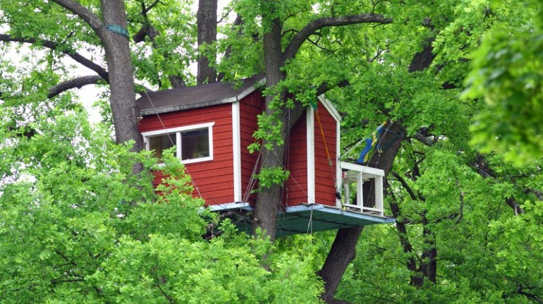 Hotels Hackspett, tree houses in Sweden
