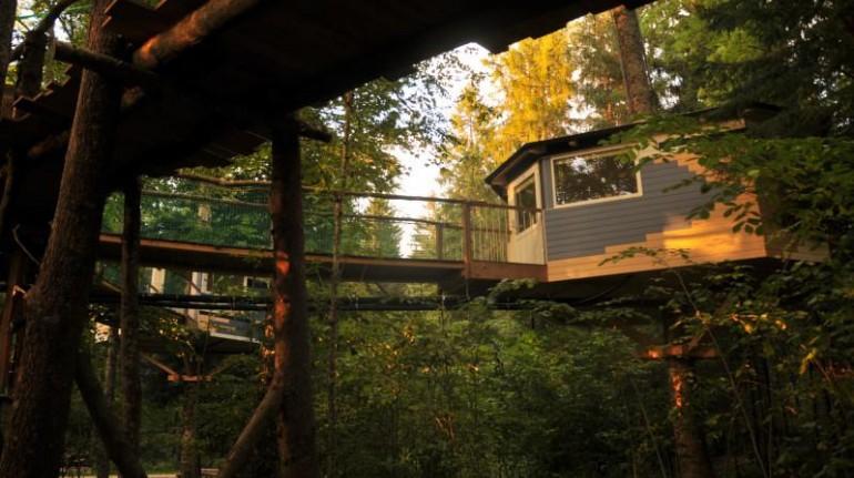 Les Nids, tree houses in Switzerland