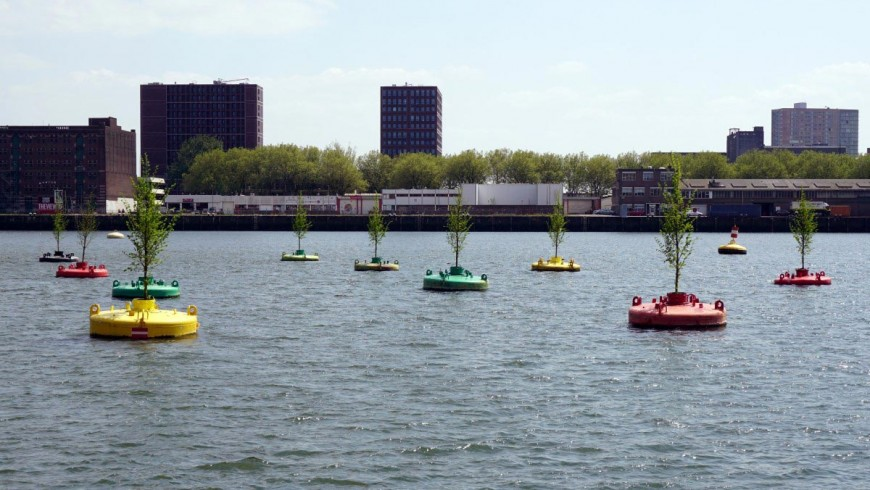 Rotterdam, a floating forest to save trees