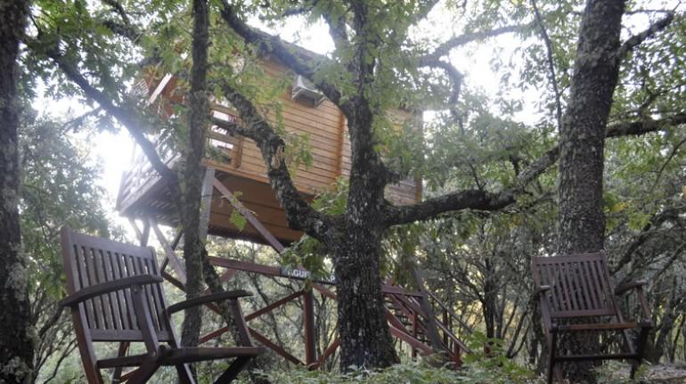 Ecolodge de Habaneros, tree houses in Spain