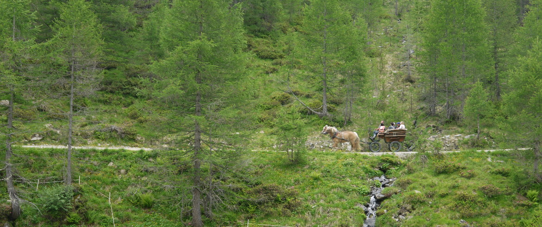 Passeiertal, South Tyrol, Italy